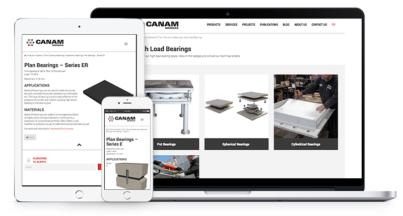 Canam-Bridges Changes the Ergonomics of Goodco Z-Tech Web Pages